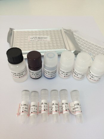Sulfamethazine ELISA Kit